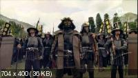 Ниндзя: Воины-тени / Ninja: Shadow warriors (2011) SATRip