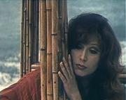 Женщина, которая поет (1978) DVD5 + IPTVRip